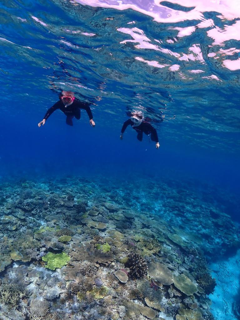 慶良間チービシ・クエフの珊瑚と魚の住む世界