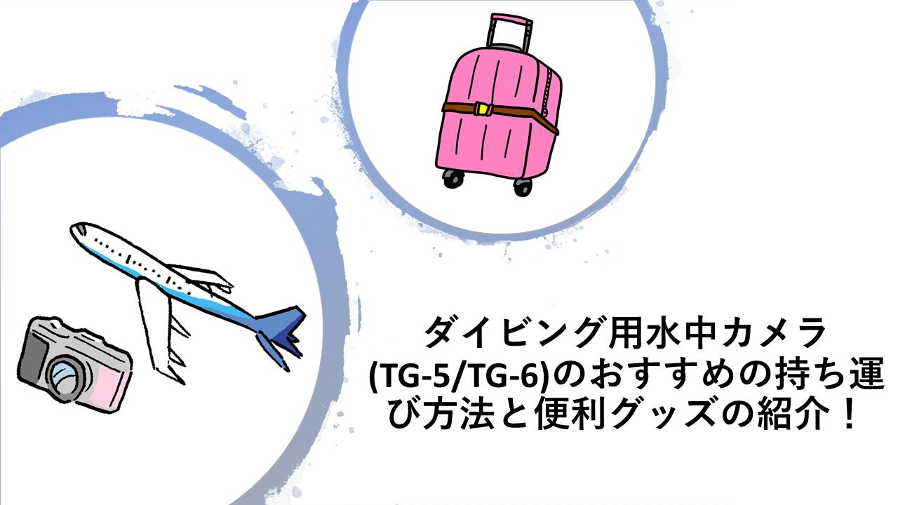 SDカード・サムネイル(水中カメラのもし運び方法)