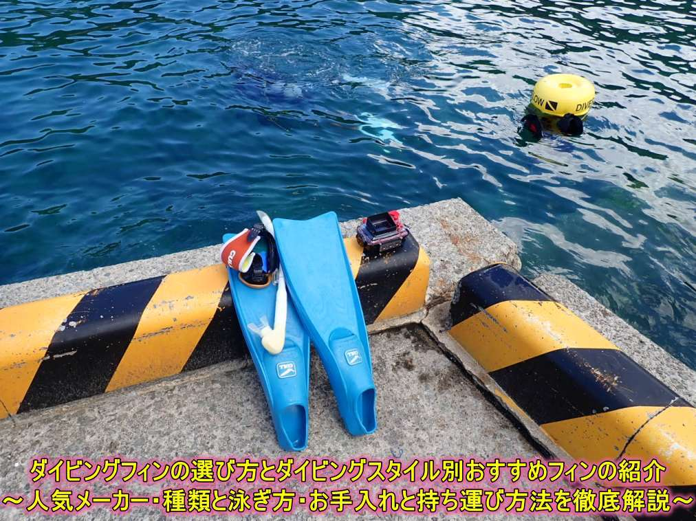 Diving Fins Selection
